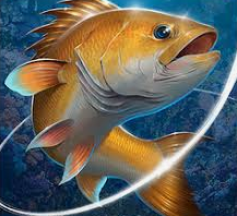 Fishing Hook Mod Apk
